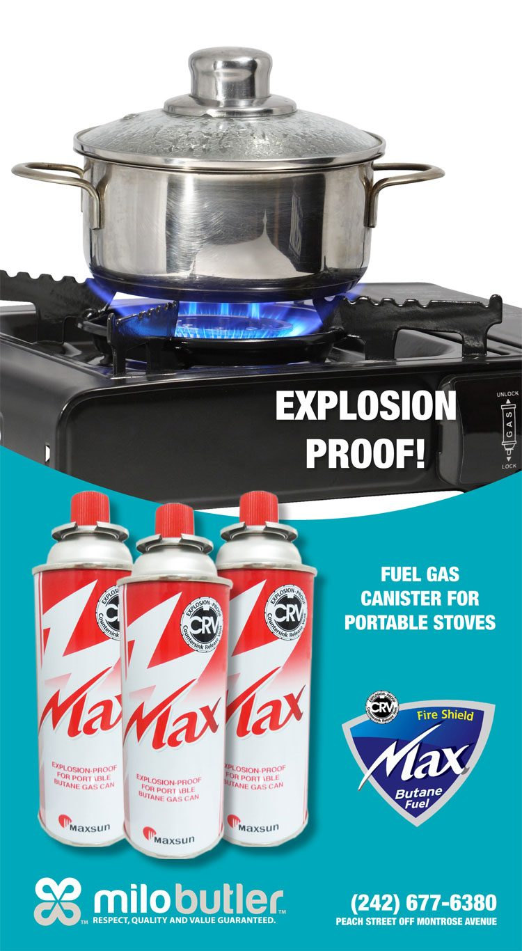 Max Butane Fuel Gas Canister for Portable Stoves • My Deals Today